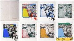Sheep Portfolio of 7 Prints by Menashe Kadishman