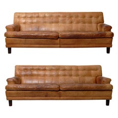 Merkur Sofas by Arne Norell in Buffalo Leather, 1960s