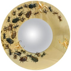 Metamorphosis Convex Mirror in Polished Brass