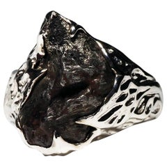 Meteorite Gold Ring Black Statement 14 Karat Gold Men's Unisex Ring Jewelry