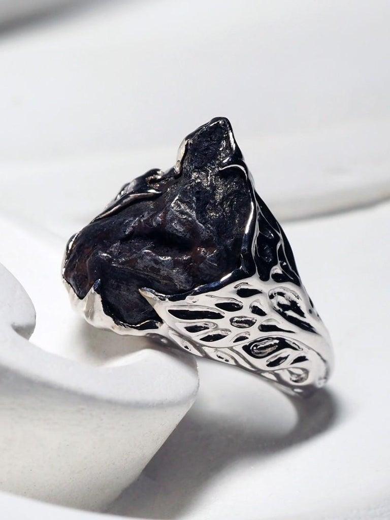 Art Nouveau Meteorite Gold Ring Black Statement 14 Karat Gold Men's Unisex Ring Jewelry For Sale