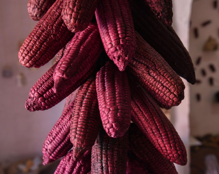 Organic Modern Mexican Hanging Ceramic Fucsia Corn Clay Decorative Rustic Piece Contemporary For Sale