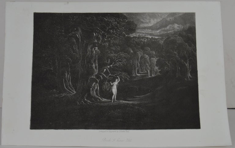 Sensational image by John Martin.  Titled Satan Tempting Eve  Drawn and engraved by John Martin. From the highly regarded Washbourne Publication of Milton's Paradise Lost, 1853.  Unframed.