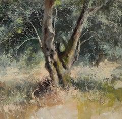 Olive Grove, Kerkyra - original nature painting modern Contemporary Art