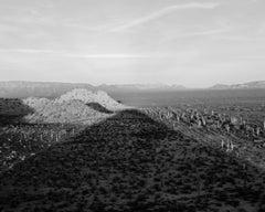 Michael Berman. 96W_091 Shadow, Cabeza Prieta National Wildlife Refuge, Arizona.
