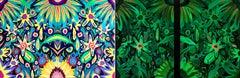 Michael Callas, Neon Flowers, Diptych (Glow in the Dark), Spray Paint/Stencil