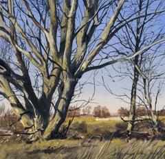 Oil Sketch #12 by Michael John Hunt