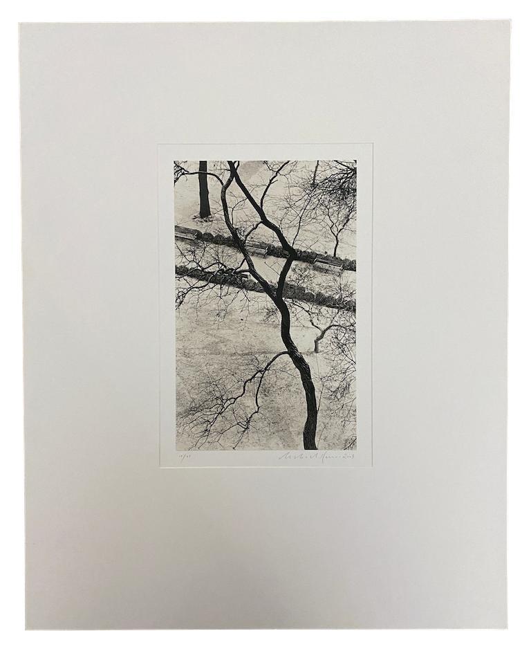 Homage to Kertesz, Gramercy Park, New York - Photograph by Michael Kenna
