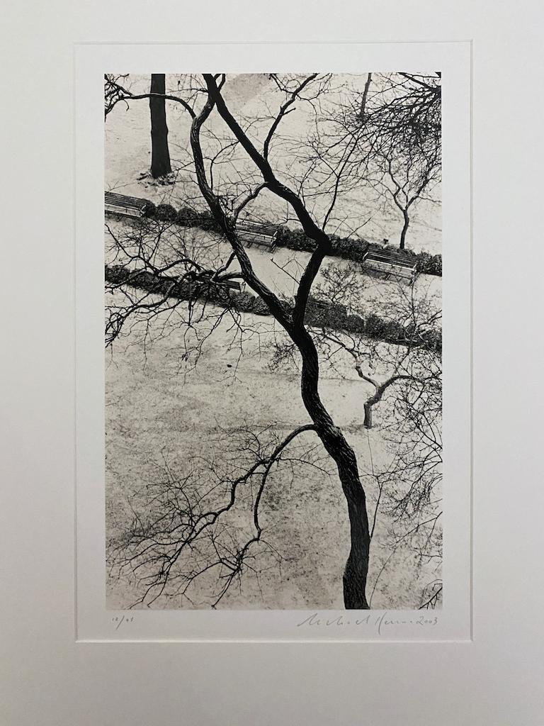 Homage to Kertesz, Gramercy Park, New York - Contemporary Photograph by Michael Kenna