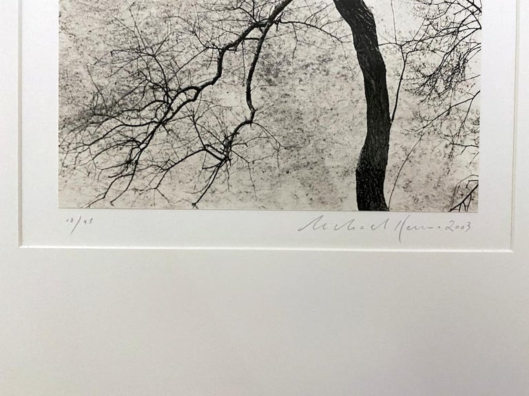 Homage to Kertesz, Gramercy Park, New York - Gray Black and White Photograph by Michael Kenna
