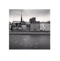 Notre Dame, Study 6, Paris, France