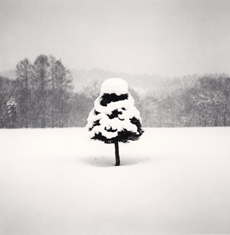 Michael Kenna Figurative Photograph - Snow Parfait Tree, Wakoto, Hokkaido, Japan