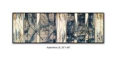 Aspen Blue (3)