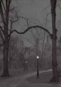 Michael Massaia. Central Park, New York City, 23rd Hour, Looking South 2018