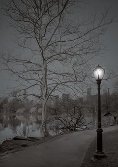 Michael Massaia. Central Park, New York City, The End 2, First Light, 2018