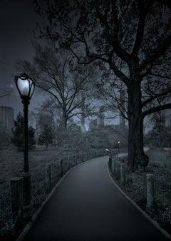 Michael Massaia. Second Spring, Three Quarter Moon, Central Park, New York City