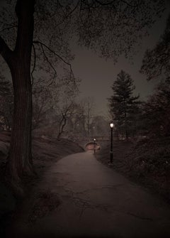 Michael Massaia. Third Spring, Central Park, New York City