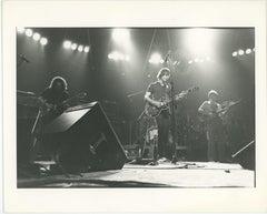 The Grateful Dead in Concert - Egypt 1978