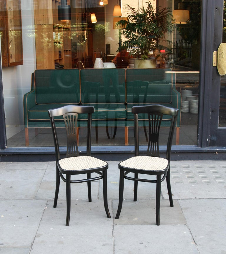 Michael Thonet Suite of a Bench and Two Side Chairs For Sale 5