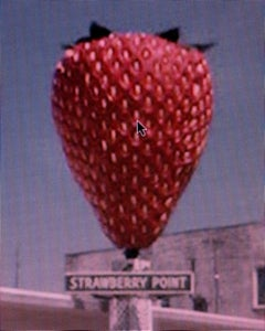 Street View: A Series of Unfortunate Events #16 – Michael Wolf, Strawberry, Art