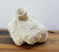 White 23-porcelain, nature like, coral, free form