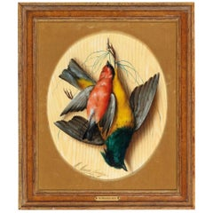 Michelangelo Meucci, Still Life with Songbirds, Oil on Cardboard, 1874 Florence