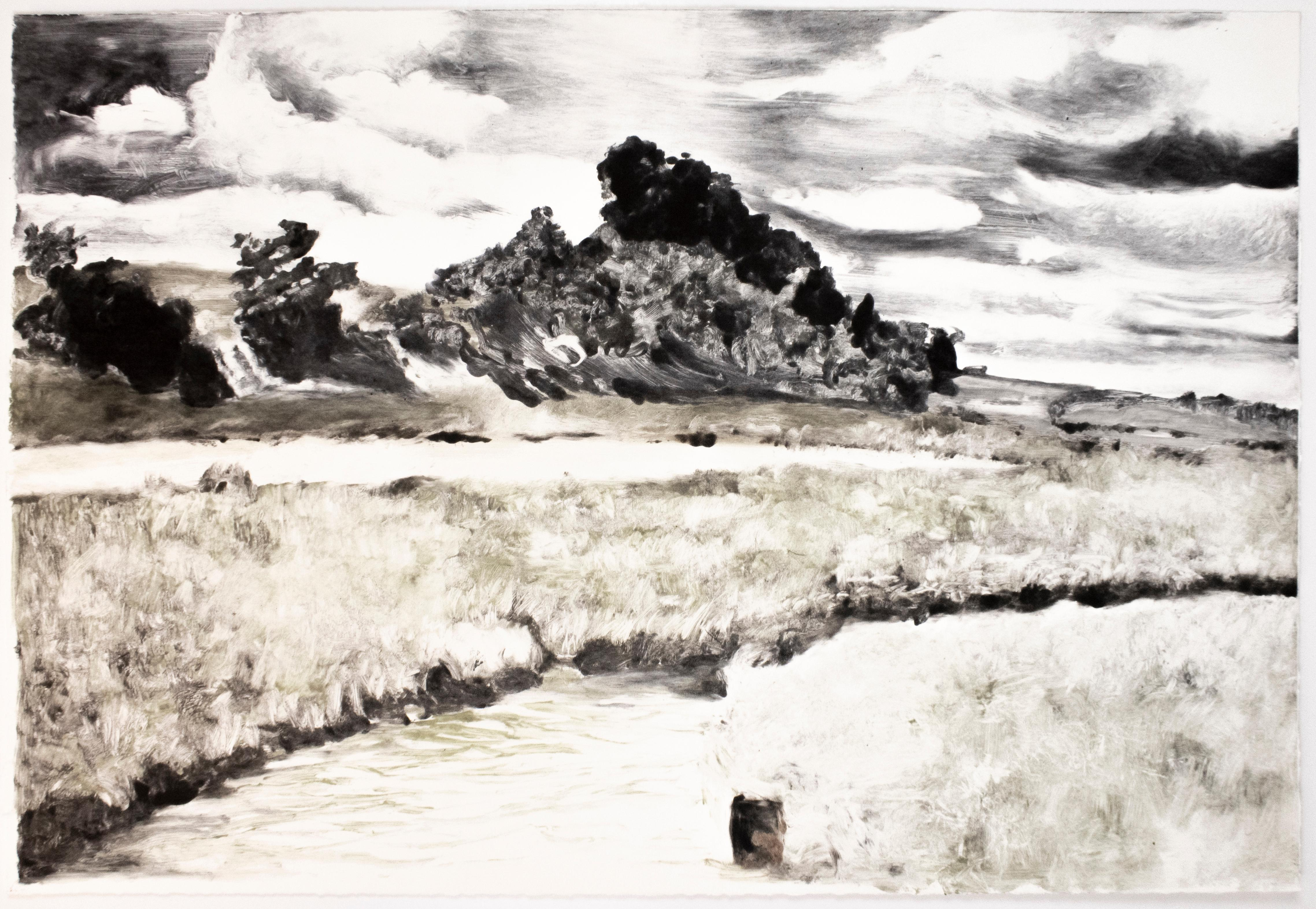 Landscape: Large scale black, white, green and grey Western American landscape