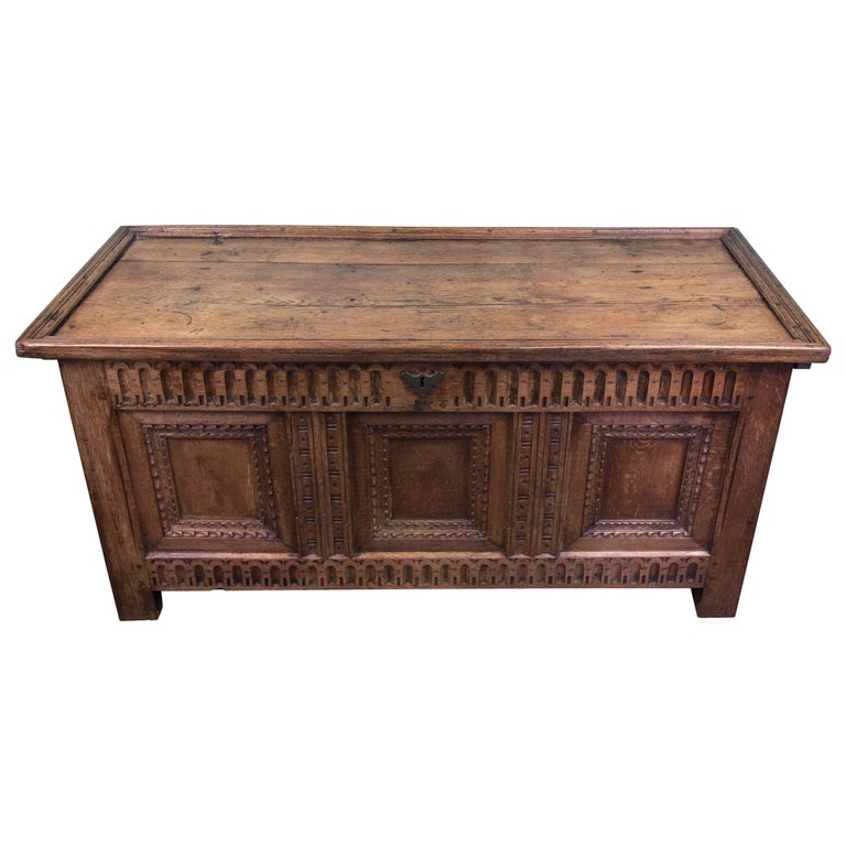 Mid-18th Century Oak Coffer Chest with Three-Panel Decorative Front For Sale