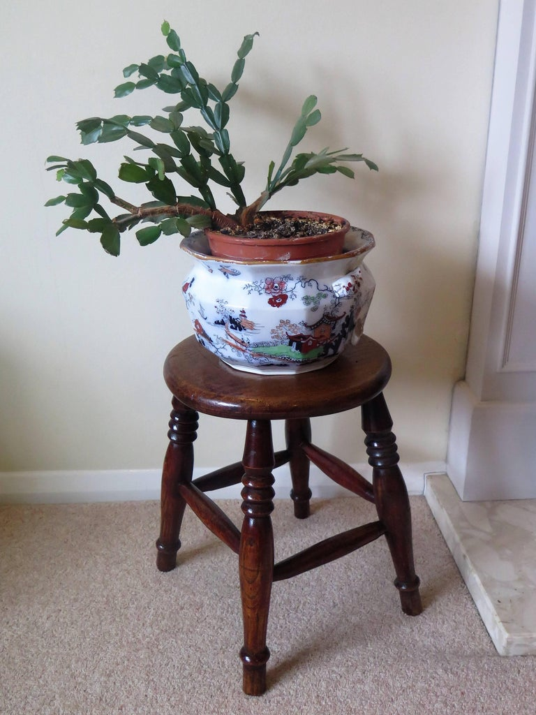 Mid-19th Century Elm Stool or Stand North East Yorkshire English Maker For Sale 15