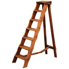 Mid-19th Century French Country Carved Pine Library Step Ladder from Normandy