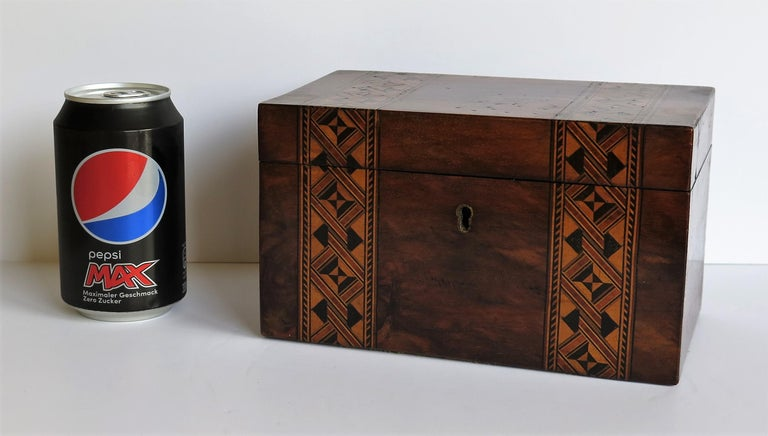 Mid-19th Century Lidded Box Walnut with Parquetry Mosaic Inlay, Mid Victorian For Sale 13