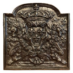 Mid-19th Century Polished Iron Fireback with French Royal Coat of Arms