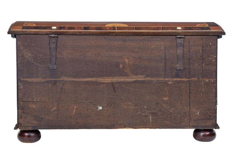 Mid-19th Century Profusely Inlaid Continental Walnut Dome Chest 4