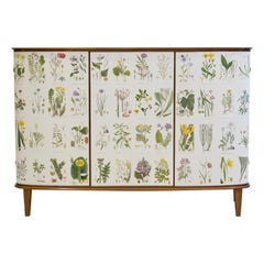 Mid-20th Century Cabinet with Nordens Flora Illustrations by C. Lindman