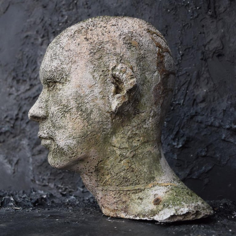 Mid-20th Century English Weathered Ghostly Plaster Bust 6