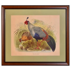 Mid-20th Century Framed Lithograph