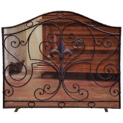 Mid-20th Century French Gothic Wrought Iron Fireplace Screen with Fleur-de-Lis