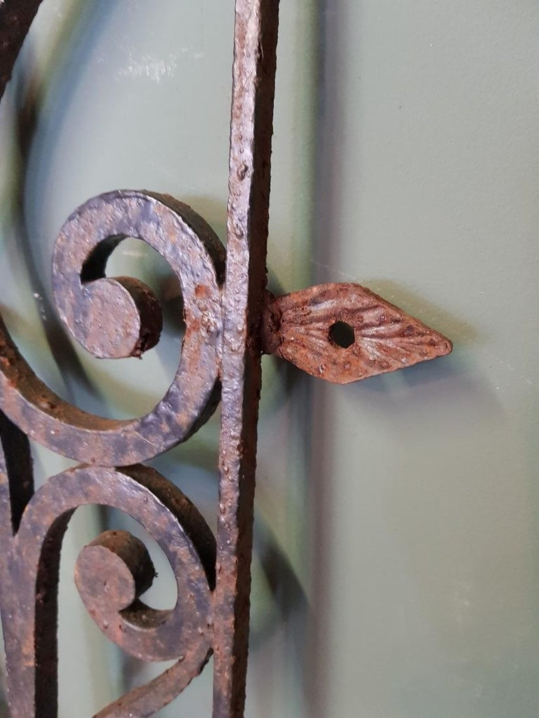 Mid-20th Century French Wrought Iron Door Grill For Sale 2