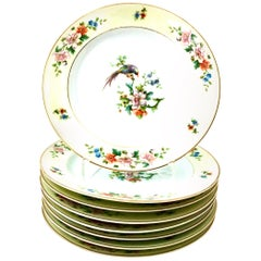 "Mid-20th Century German Porcelain ""Songbird"" Salad/Dessert Plate by H&C Set of 8"