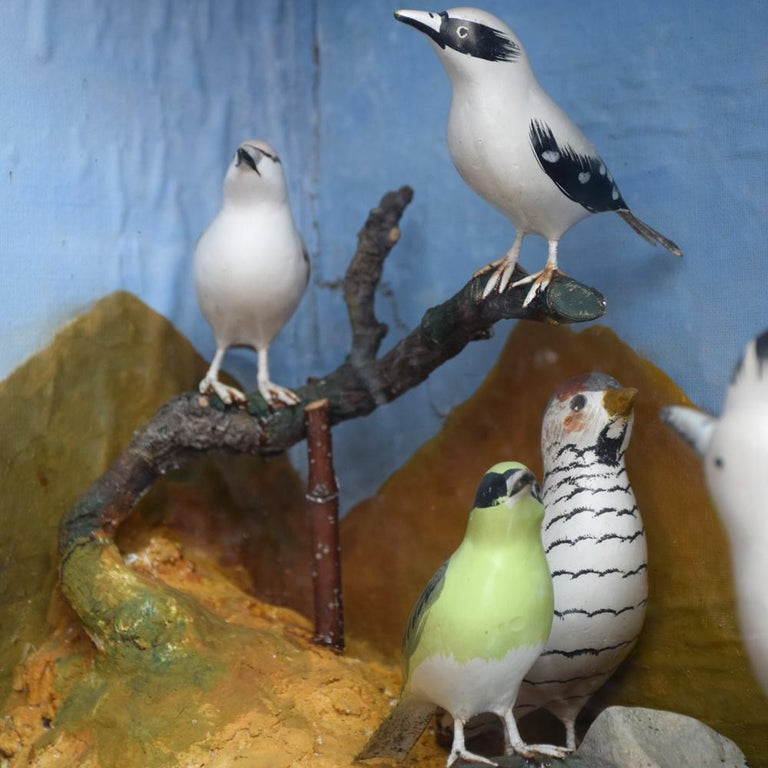Mid-20th Century Hand Carved Folk Art Bird Diorama with Authentication Stamp For Sale 2
