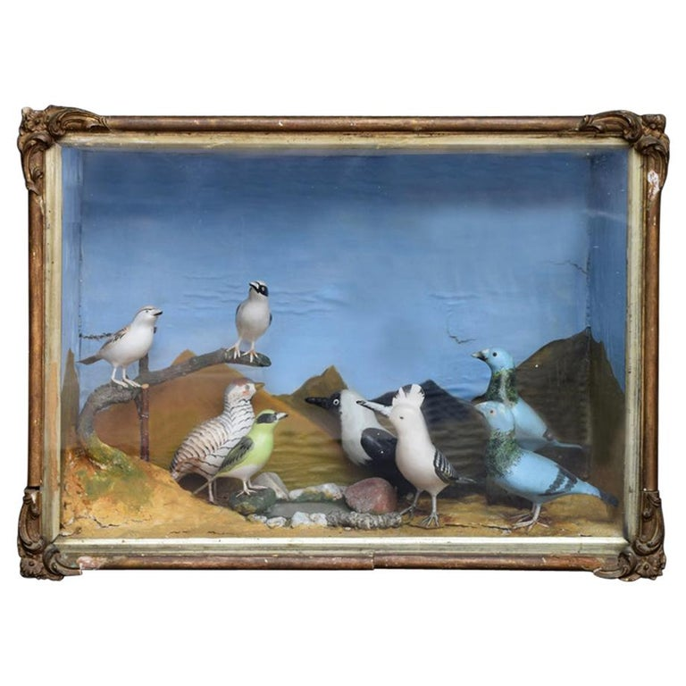 Mid-20th Century Hand Carved Folk Art Bird Diorama with Authentication Stamp For Sale