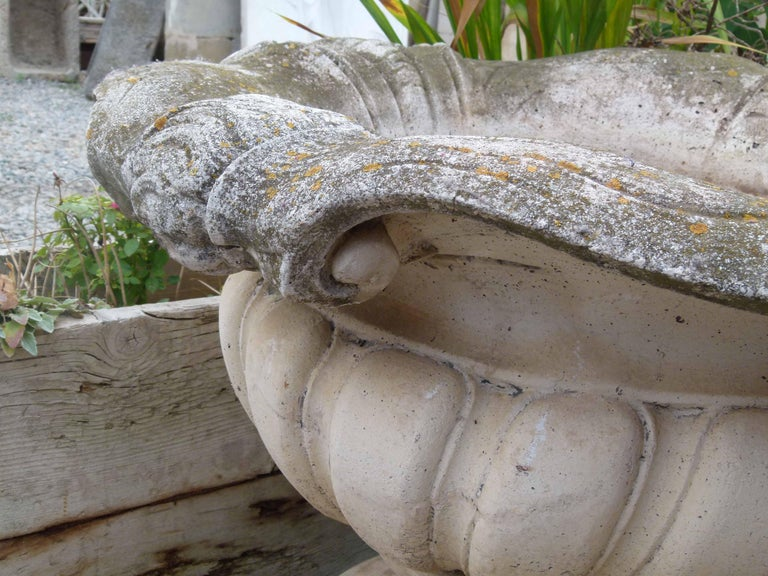 Mid-20th Century Reconstituted Stone Urn in Classical Greek Style For Sale 1