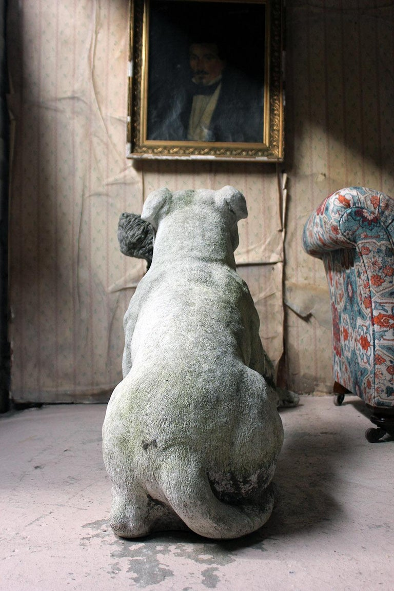 Mid-20th Century Cast Composition Stone Staffordshire Bull Mastiff For Sale 5