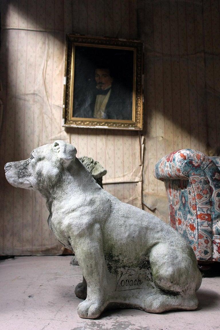 Mid-20th Century Cast Composition Stone Staffordshire Bull Mastiff For Sale 6