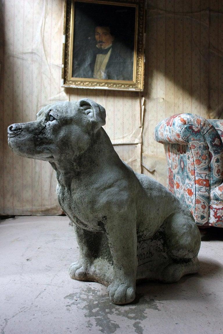 Mid-20th Century Cast Composition Stone Staffordshire Bull Mastiff For Sale 7