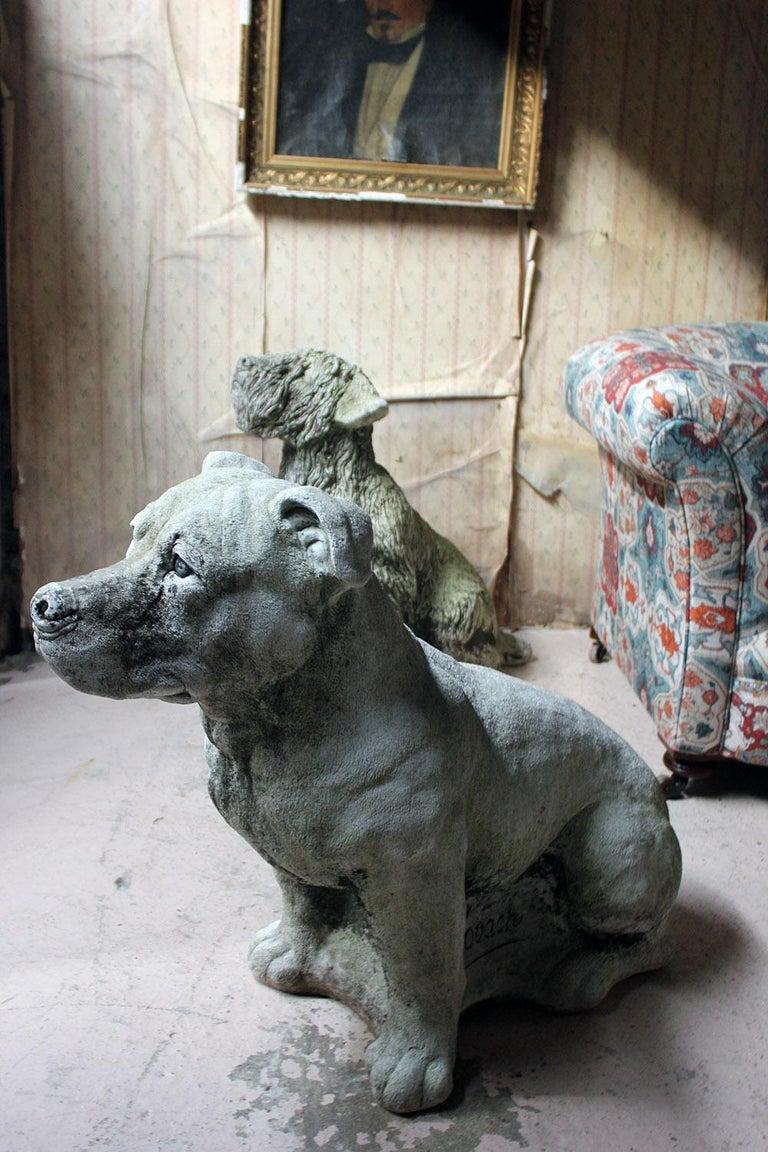 Mid-20th Century Cast Composition Stone Staffordshire Bull Mastiff For Sale 8