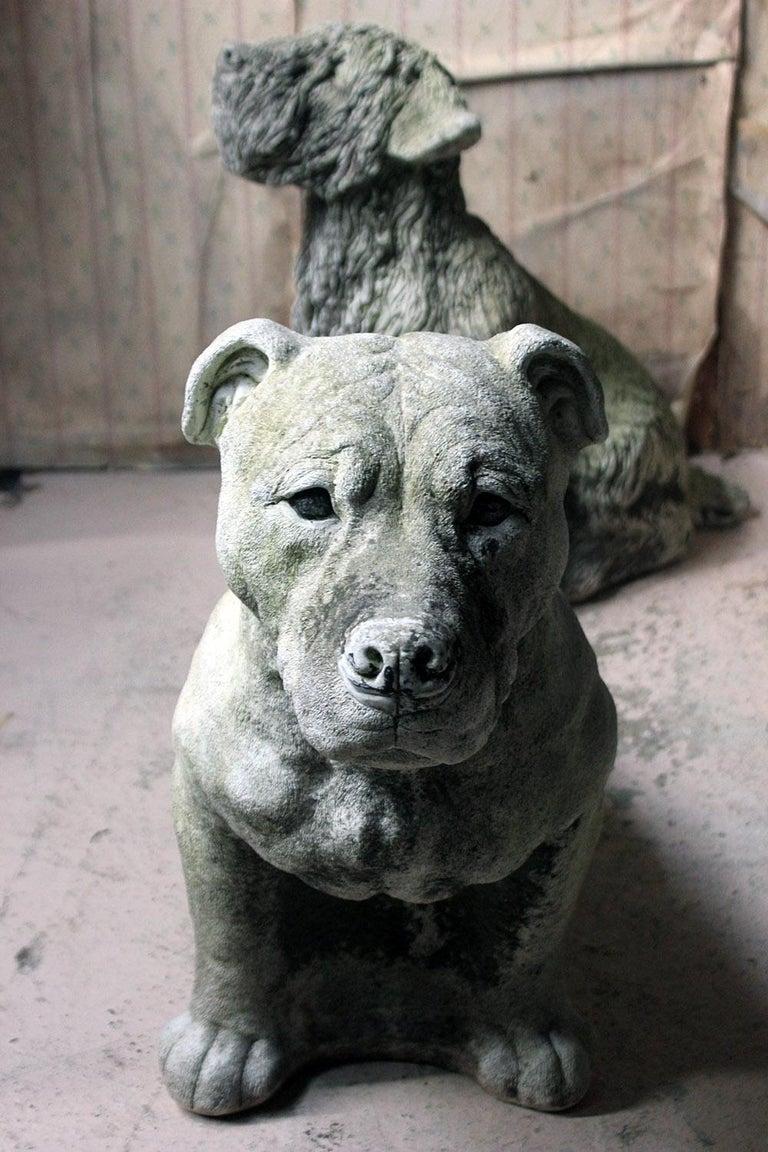 Mid-20th Century Cast Composition Stone Staffordshire Bull Mastiff For Sale 10