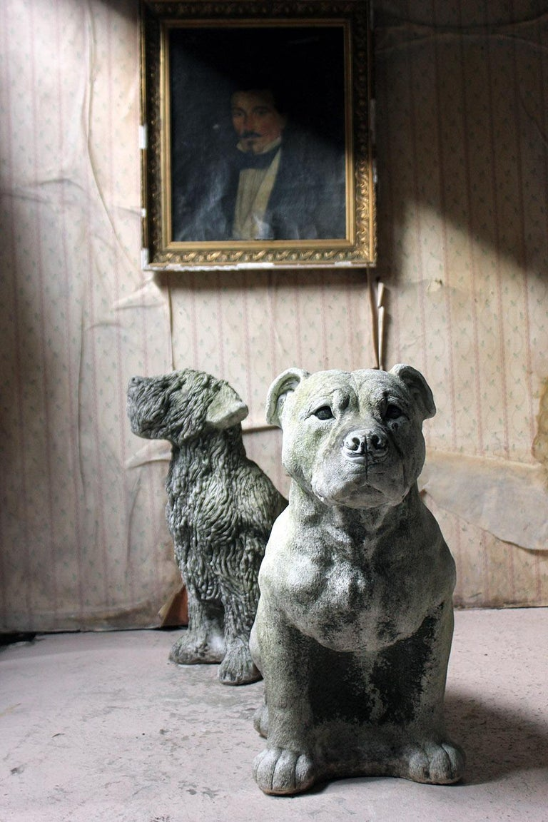 Mid-20th Century Cast Composition Stone Staffordshire Bull Mastiff For Sale 12