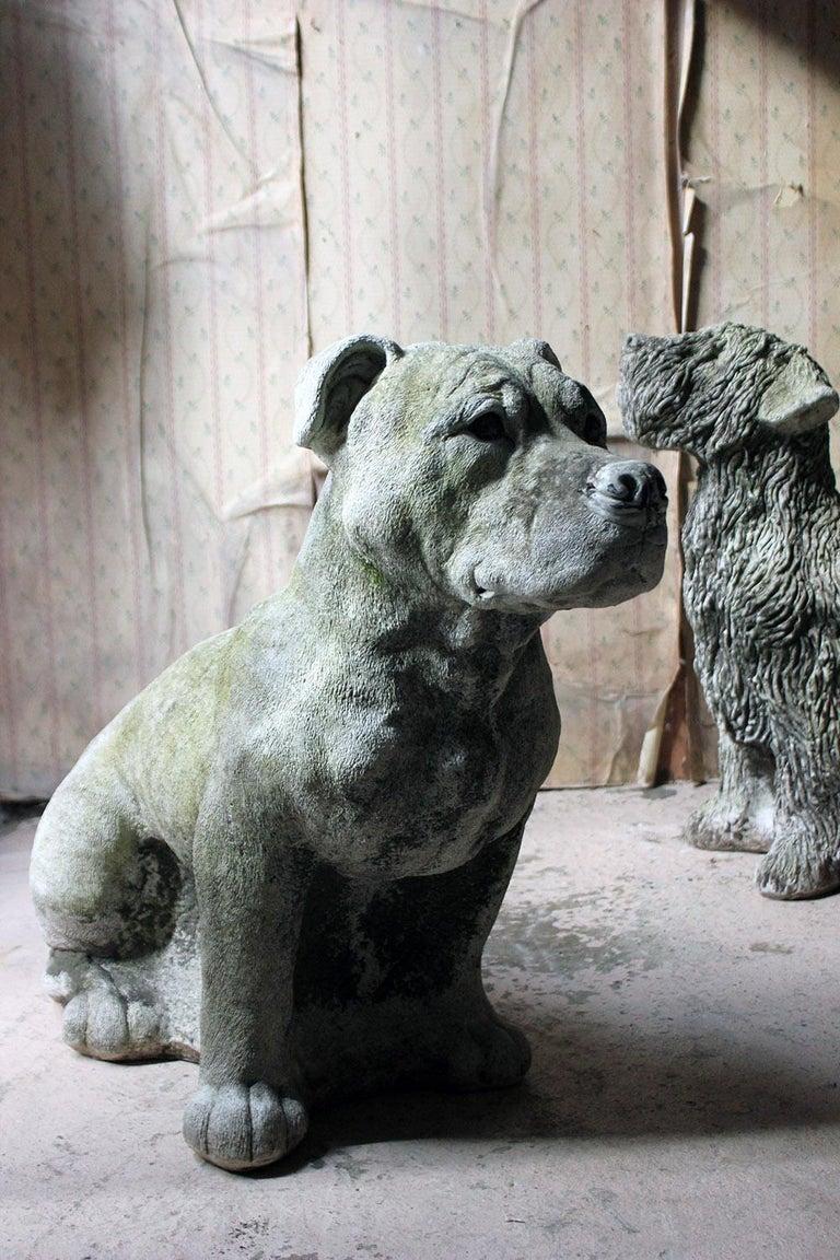 Mid-20th Century Cast Composition Stone Staffordshire Bull Mastiff For Sale 13