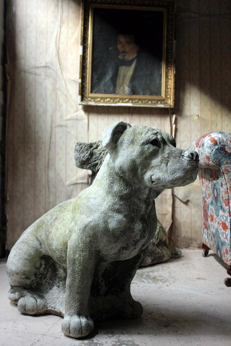 Mid-20th Century Cast Composition Stone Staffordshire Bull Mastiff For Sale 14